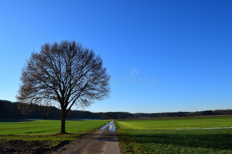 Trail in cultural landscape royalty free stock photos