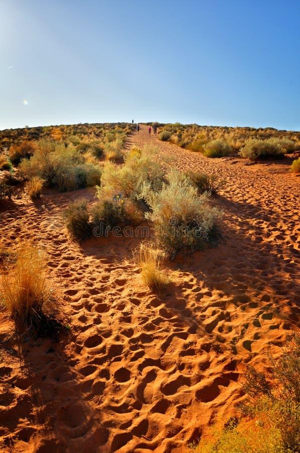 Trail In Desert Stock Images
