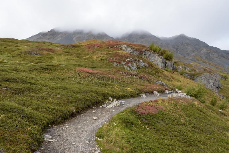 Trail at Exit Glacier, Harding Ice field, Kenai Fjords National Park, Seward, Alaska, United States.  stock images