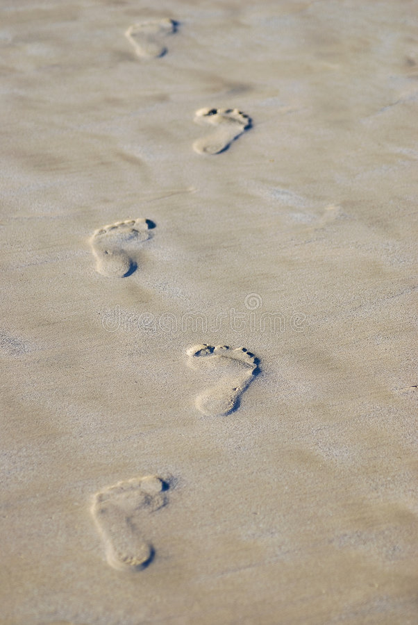 Trail of footprints stock image