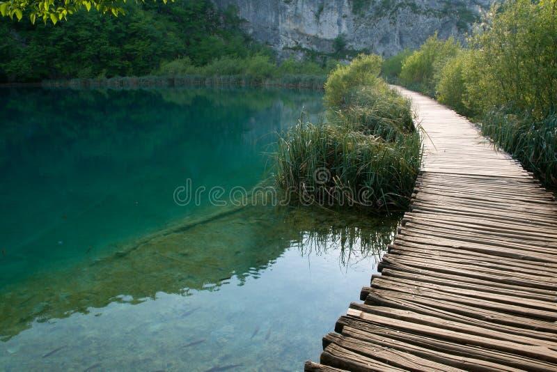 The trail at the lake