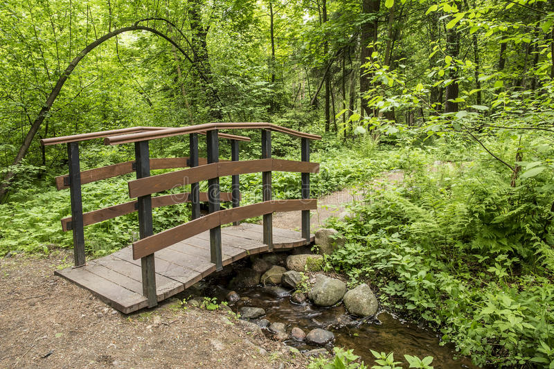 trail-leads-to-small-wooden-bridge-over-