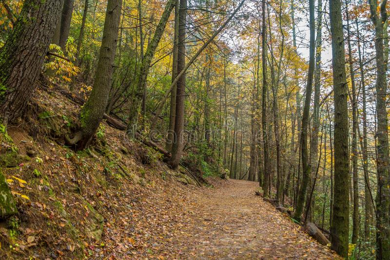 Trail in the mountains in autumn royalty free stock photography