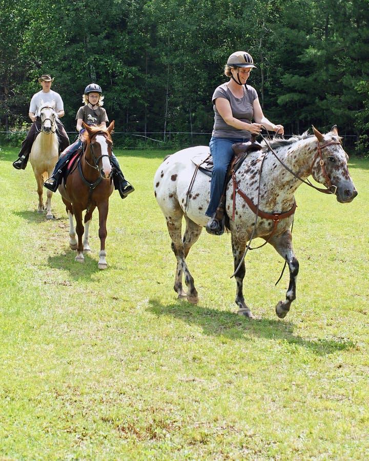 Download Trail Riders stock photo. Image of horseback, line, helmets - 10595210