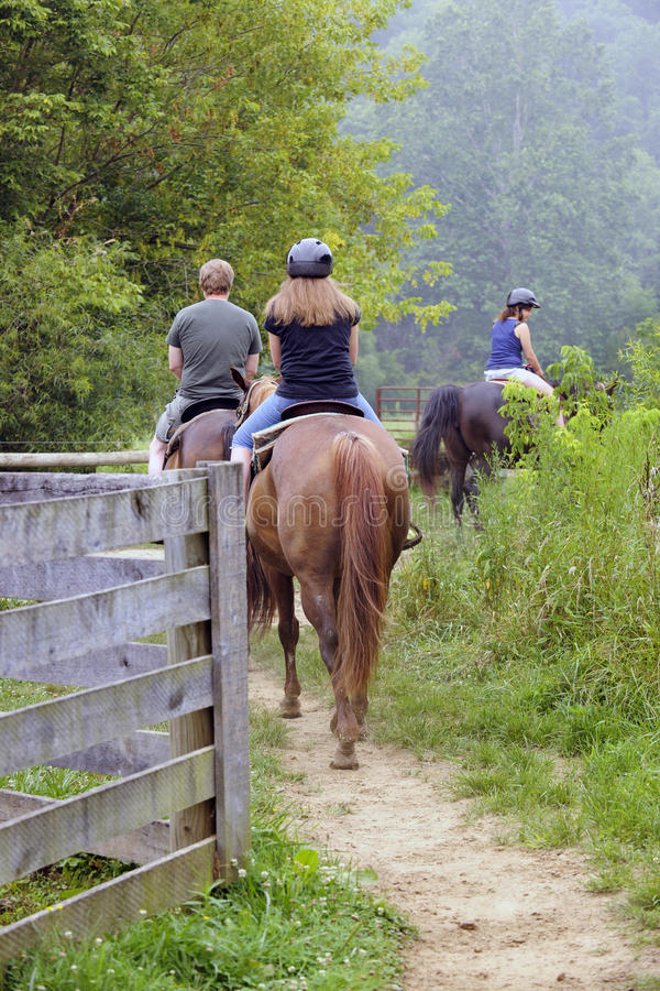 Download Trail Riders stock image. Image of summer, outside, trees - 20438255