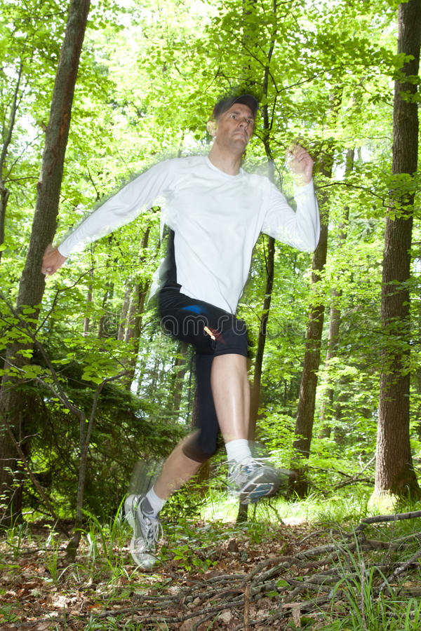Trail runner. Running at a fast pace through the woods stock images