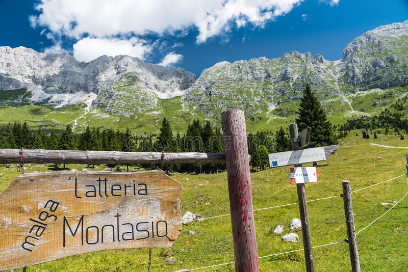 Trail signs at Malga del Montasio. Closeup of trail signs with trees and mountains in the background. Trail of Malga del Montasio in a sunny day with clouds stock photo