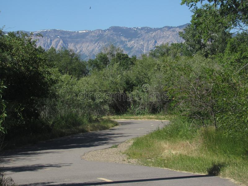 trail arkivbild