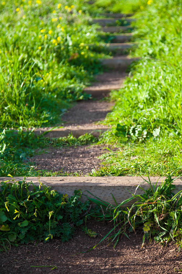 Download Trail Steps stock image. Image of outside, outdoors, selective - 13037375