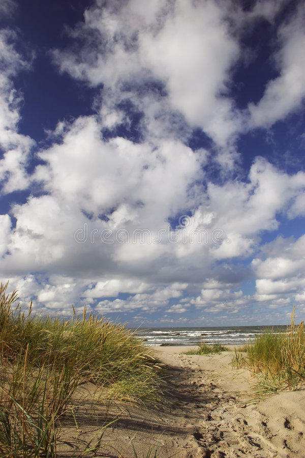 Download Trail to the Beach stock photo. Image of sandy, seashore - 1356028