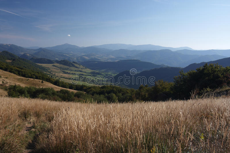Download On The Trail To Halicz Peak Stock Image - Image: 11483403