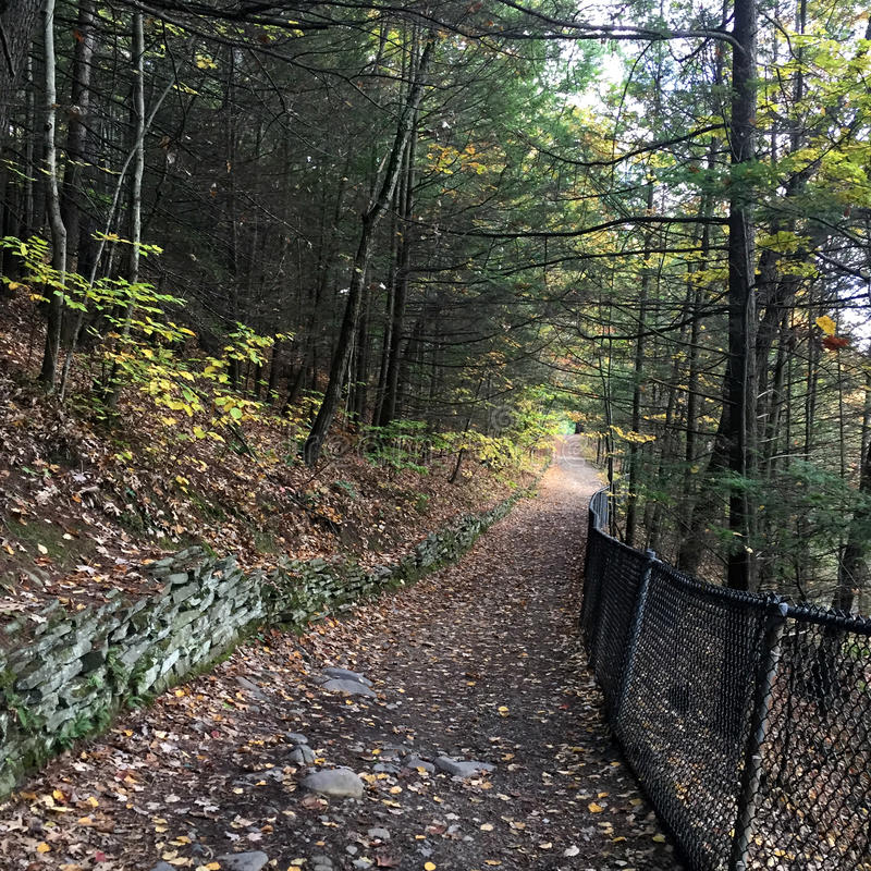 Trail at Watkins Glen State Park, NY. Hiking trail above gorge heading back down towards parking lot royalty free stock images