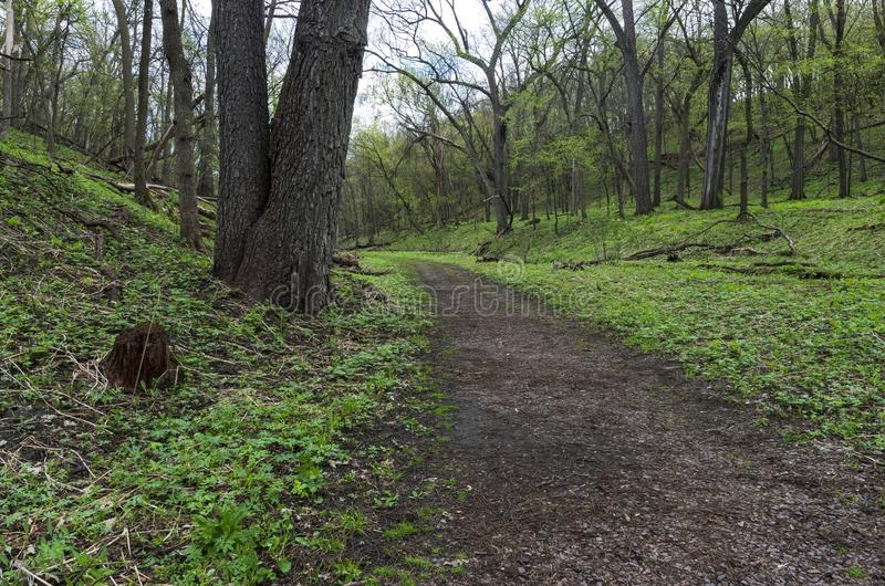 Trail Through Wooded Valley of Flandrau State Park. In new ulm minnesota stock photos