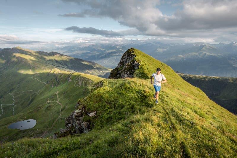 Trailrunner dans les montagnes image stock
