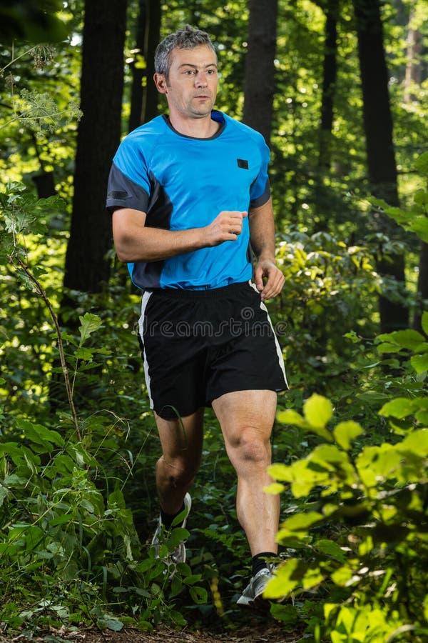 Trailrunning Stock Photo