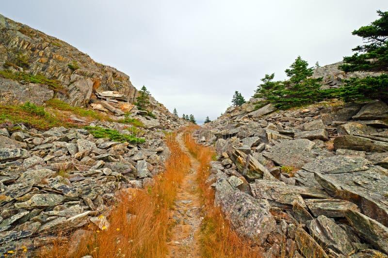 Trailtrhough ett bergpasserande arkivfoto