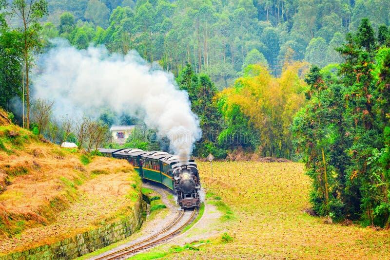 Train à voie étroite de vapeur photographie stock libre de droits