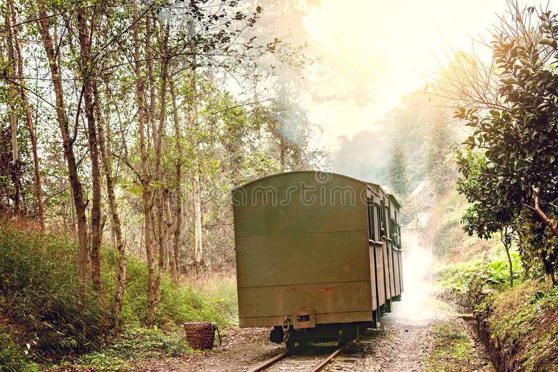 Train à voie étroite de vapeur photos stock