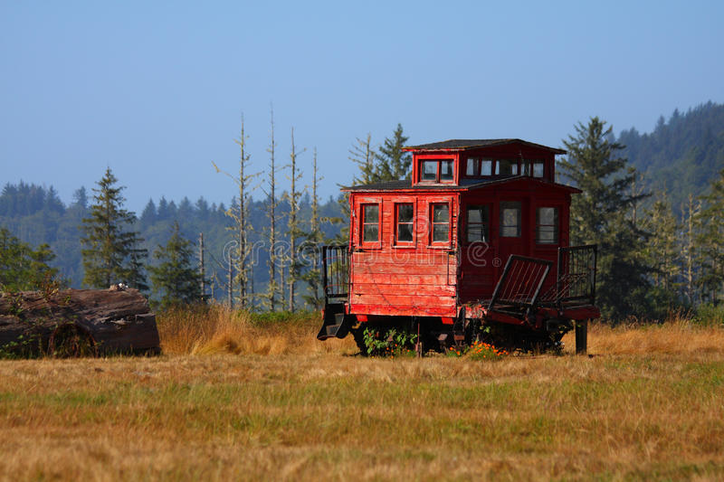 Download Train stock photo. Image of northern, grass, wildness - 14872832