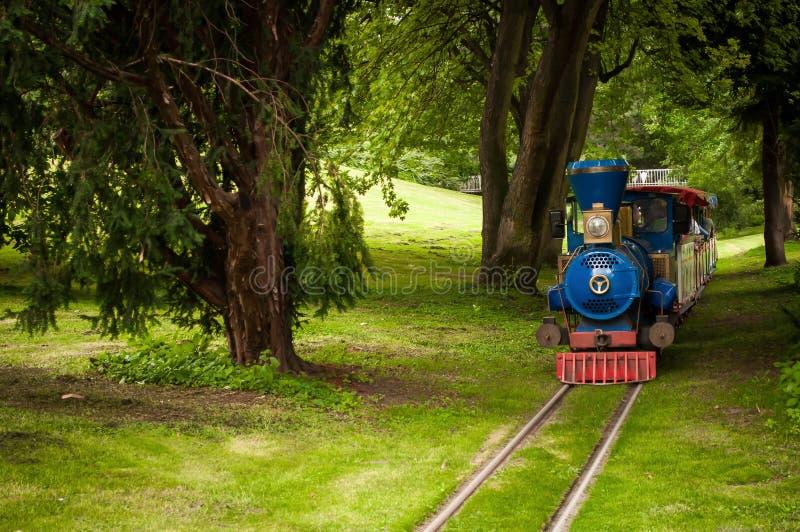 Train dans la forêt photos libres de droits