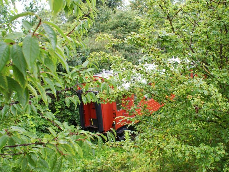Train dans les bois photographie stock