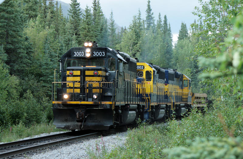 Train de l'Alaska image stock