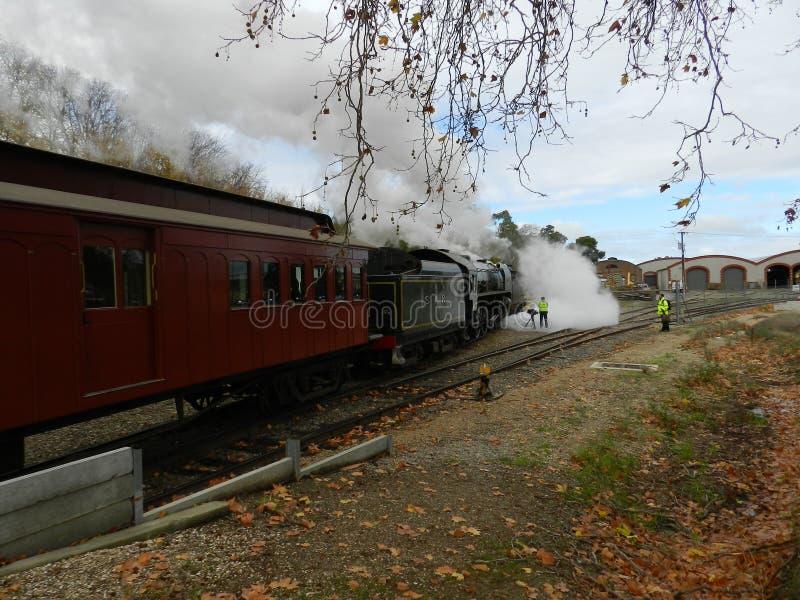 Train de vapeur de Barker de bâti image stock
