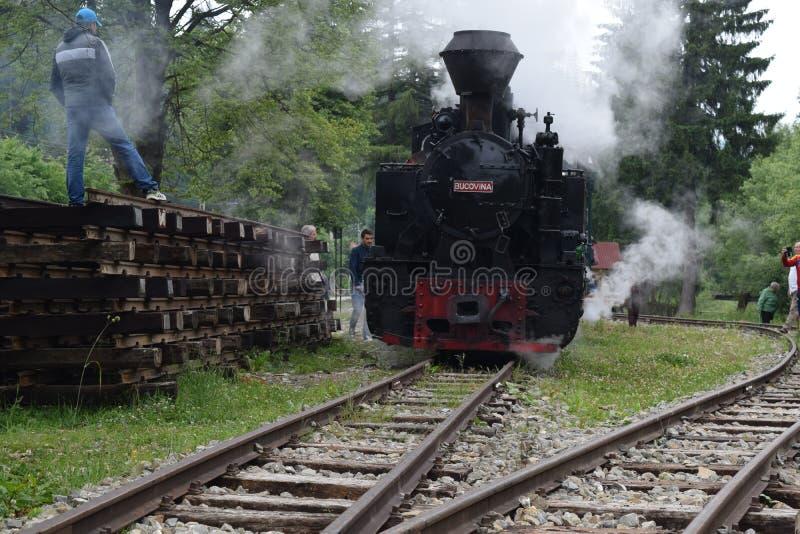 Train de vapeur de Mocanita photographie stock libre de droits