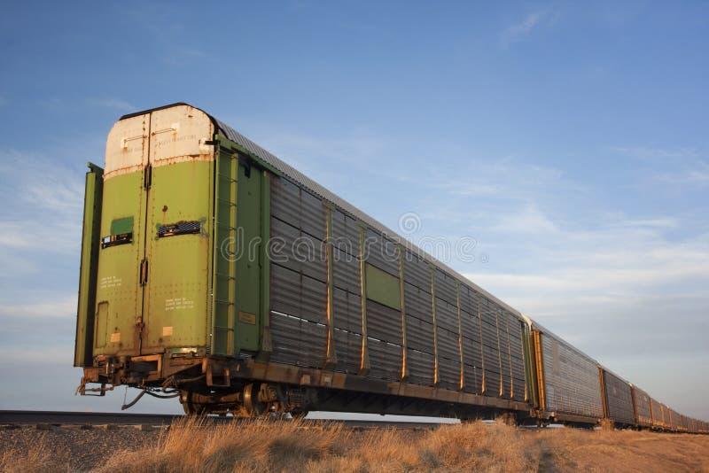 Train des véhicules de longeron pour le transport de bétail photo stock