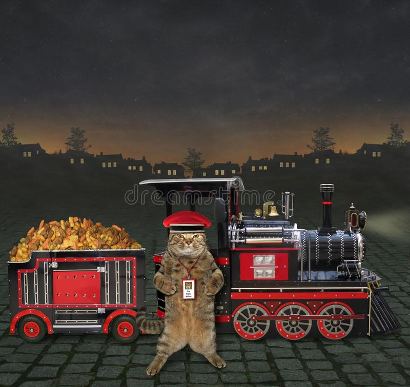 Train with feed for pet 2. The train is loaded with feed for pet. The cat railman stands next to it royalty free stock photo