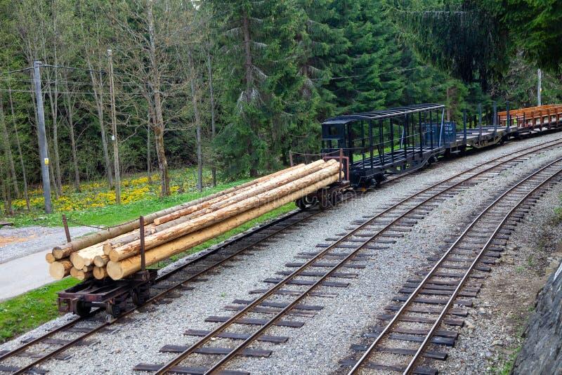 Train forestier photo stock