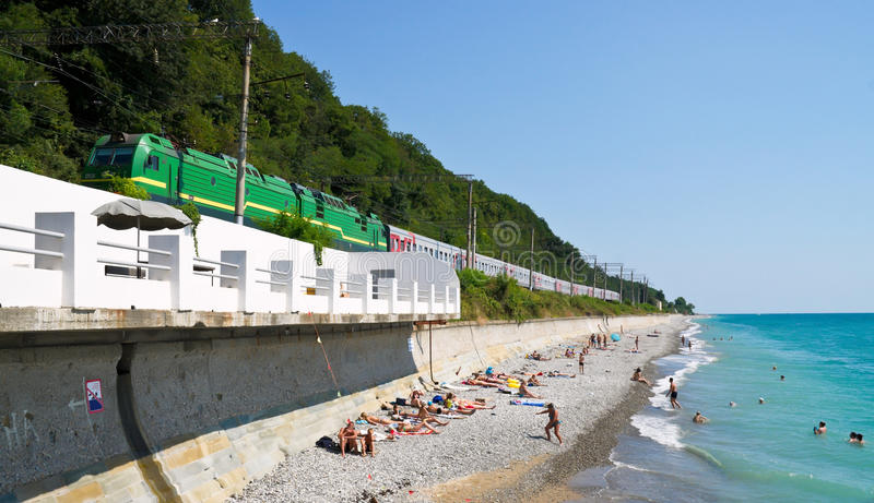 Download Train goes above a beach stock photo. Image of coastal - 22994558