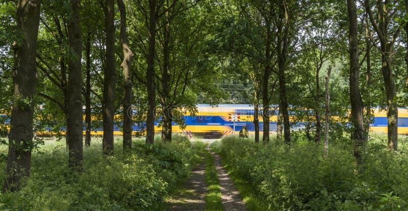 Train passant par en nature photos libres de droits