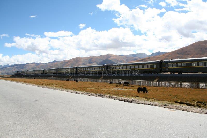 train passing through lhasa tibet stock photos