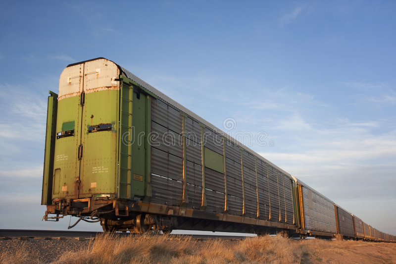 Train of rail cars for livestock transportation stock photo
