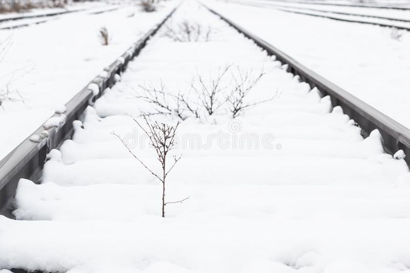 Train rails, track covered with snow during winter. stock images