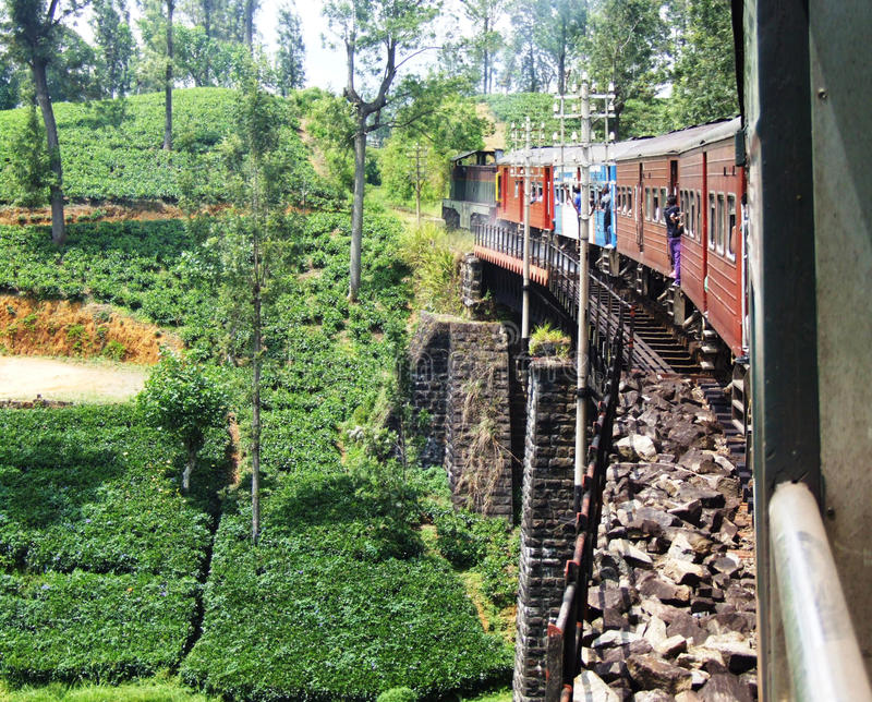 Train rides over the bridge in Sri Lanka stock photo