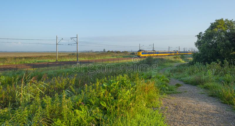 Train riding along a field in wetland below a blue sky at sunrise. In summer stock photo