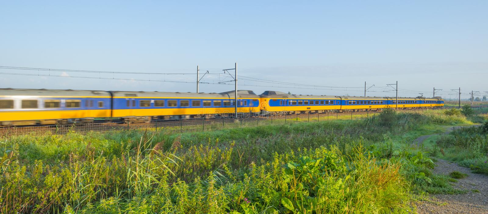Train riding along a field in wetland below a blue sky at sunrise. In summer stock photos