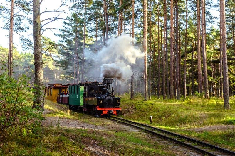 Train sur un chemin de fer à voie étroite photos stock