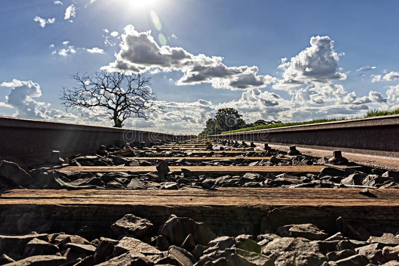 train track with dried tree to the left and plantation of sugar cane to the right with sun facing stock photos