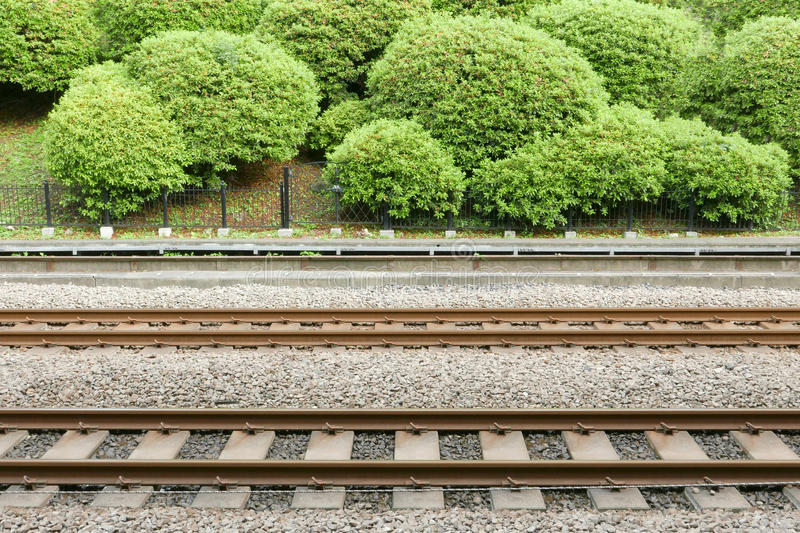 Train track with green plants in Japan station royalty free stock images
