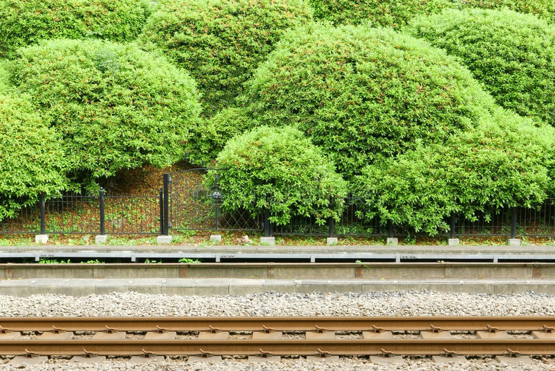Train Track With Green Plants In Japan Station Stock Photo - Image ...