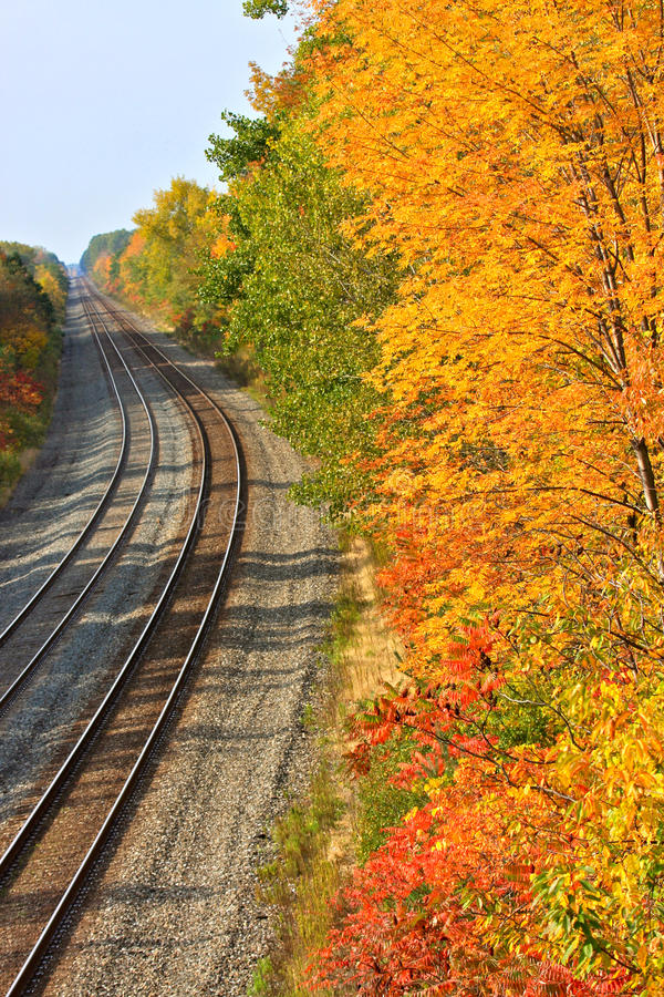 Train Tracks in Autumn. Vertical view of a long stretch of railroad tracks bordered by trees in colorful autumn foliage royalty free stock image