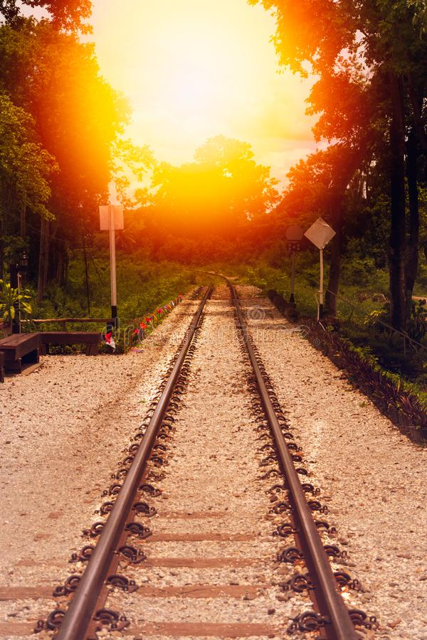 Train tracks through the forest and sunset. stock photography