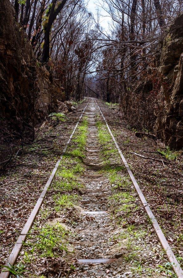 Converging Railway tracks stock image. Image of nostalgia