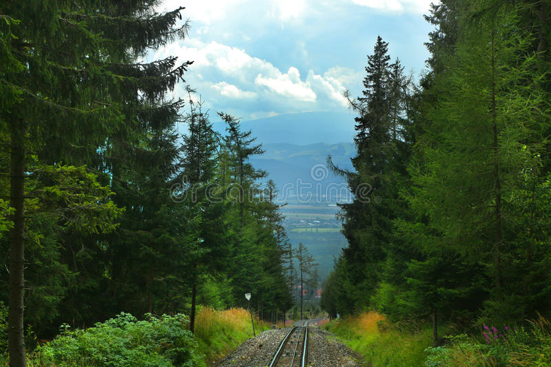 Train Tracks in mountains. Rails between the forest trees. Train tracks near the trees leading off in to the distance and down stock photography
