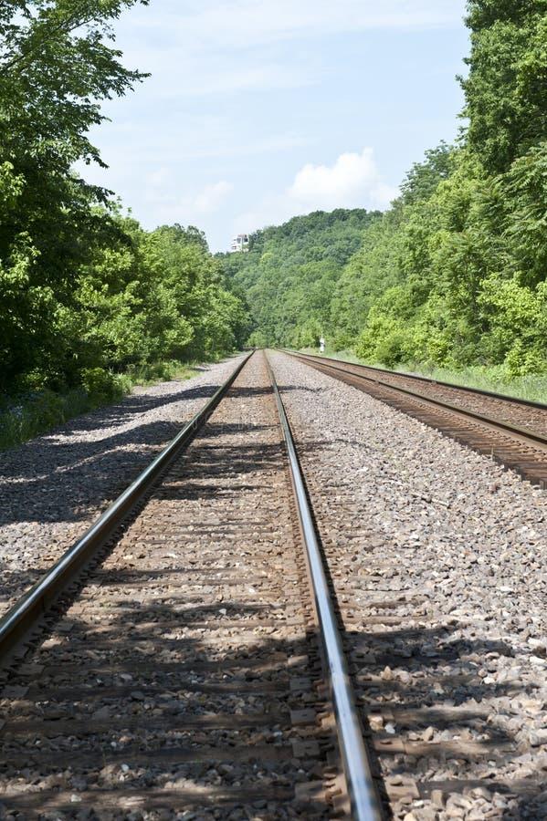 Train tracks through the woods