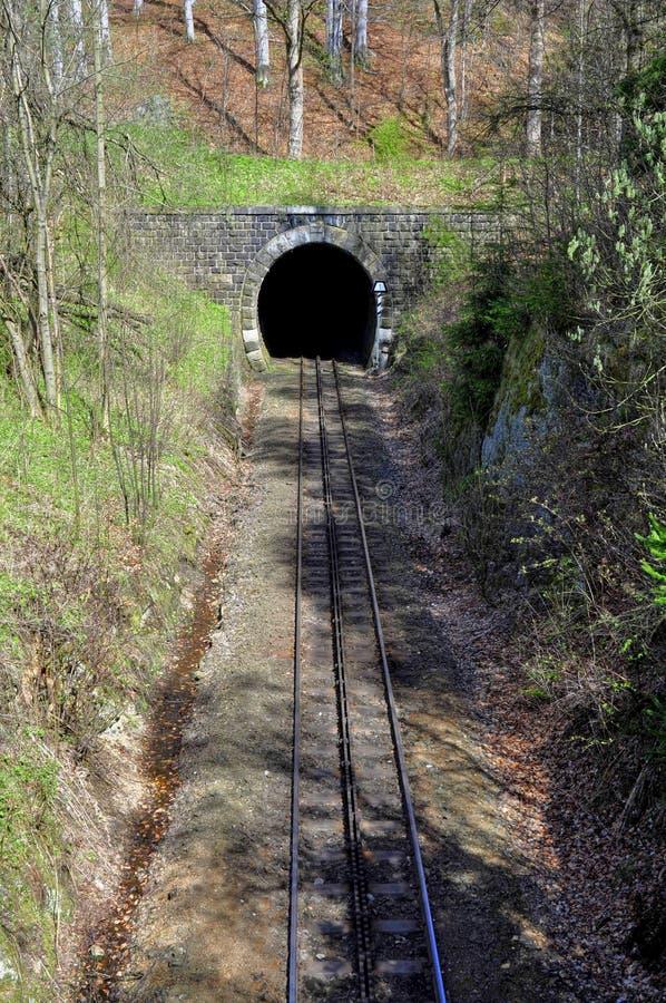 Train tunnel. And cogwheel train tracks in the Desna - Czech Republic stock photo