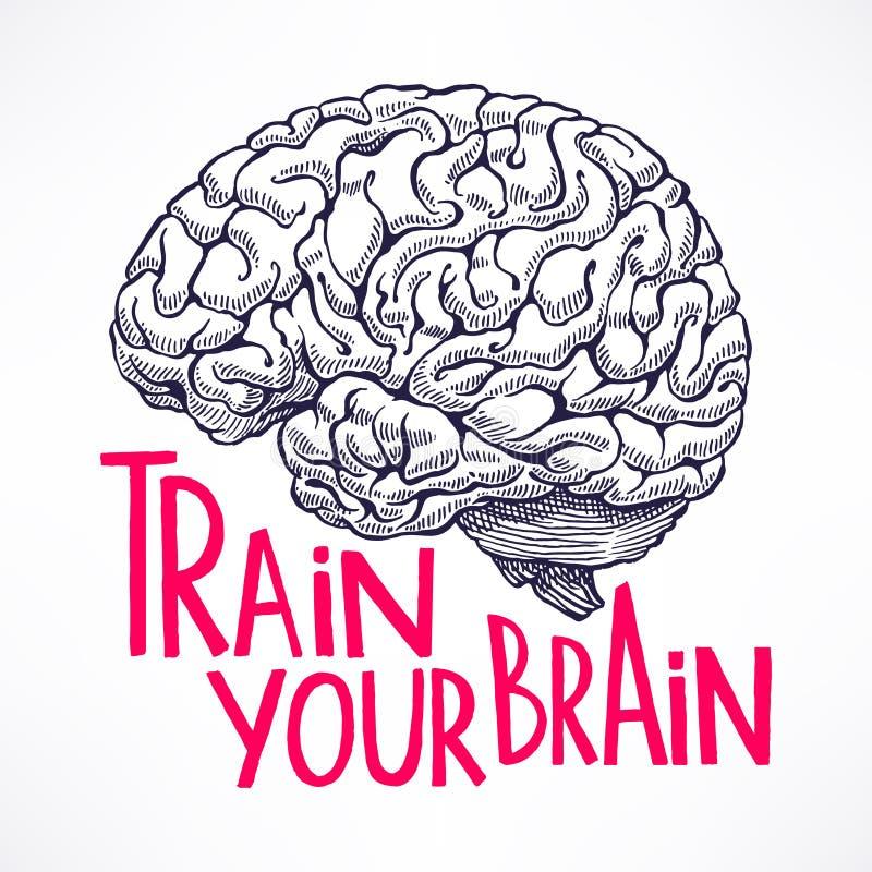 Train your brain stock illustration